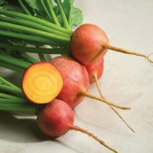 Touchstone Gold Beet