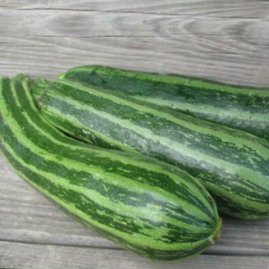 Courgette Cocozelle