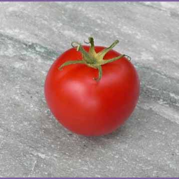 Pink Canabec Tomato
